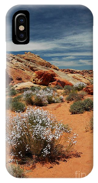 513p Rainbow Vista In The Valley Of Fire IPhone Case