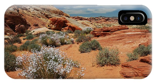 601p Rainbow Vista In The Valley Of Fire IPhone Case