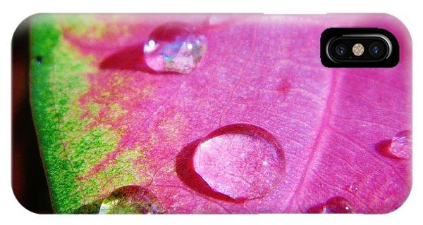 Raindrop On The Leaf IPhone Case