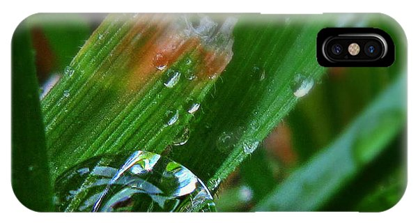 Raindrop In The Grass IPhone Case