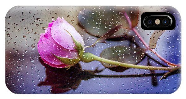 Raindrops And The Rose IPhone Case