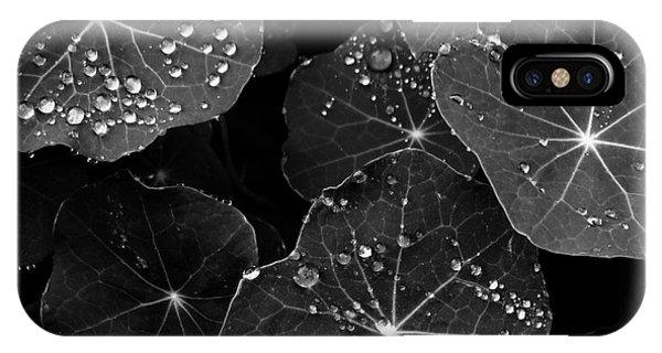 Raindrops On Nasturtium IPhone Case