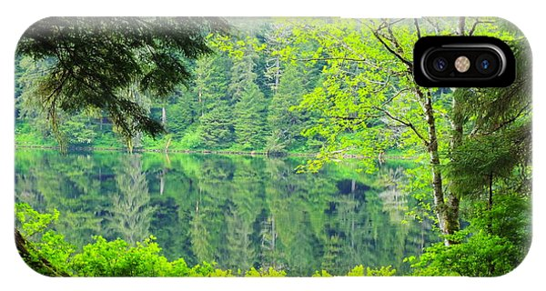 Rainforest Beauty IPhone Case