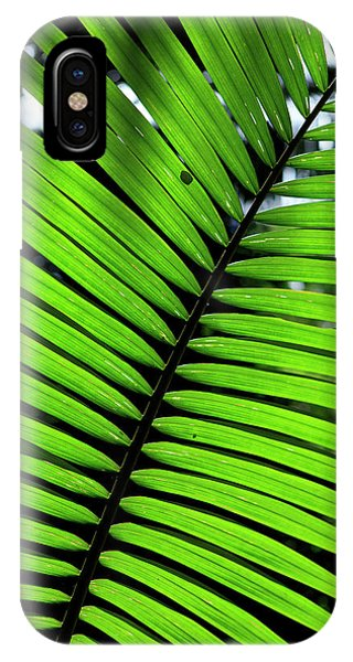 Far North Queensland iPhone Case - Rainforest Leaves Form Abstract by Paul Dymond