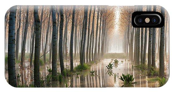 Birch Tree iPhone Case - Rains Of Spring by Raffaele Spettoli