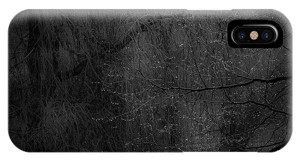 Twig iPhone Case - Rainy And Ashy by Marek Boguszak
