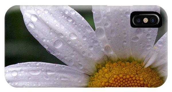 Rainy Day Daisy IPhone Case