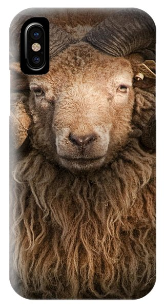 Ram Portrait IPhone Case