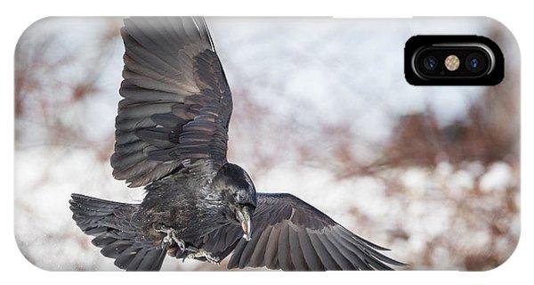 Raven In Flight IPhone Case