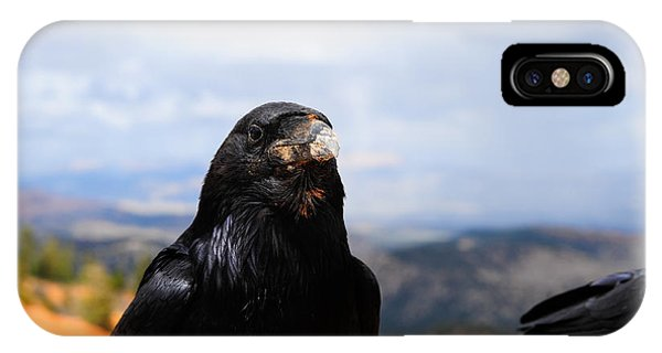 Raven Portrait IPhone Case