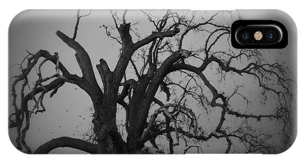 Raven Tree IPhone Case