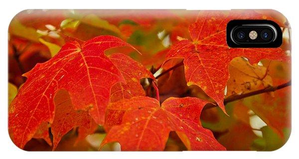 Ravishing Fall IPhone Case