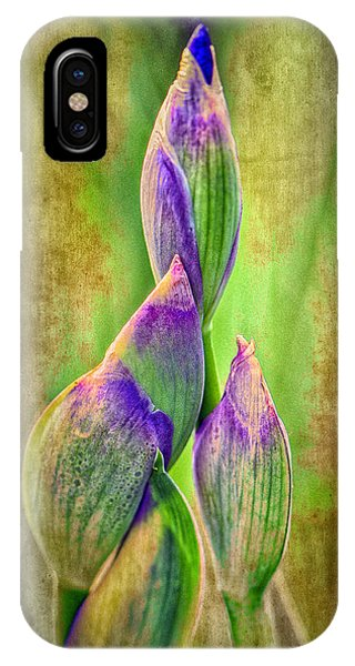 Reach For Spring IPhone Case
