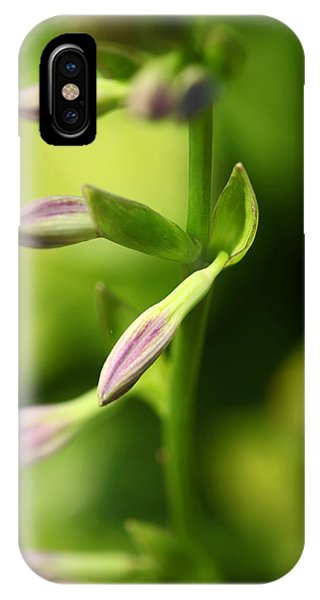 Ready To Bloom Hostas IPhone Case