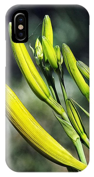 Ready To Bloom IPhone Case