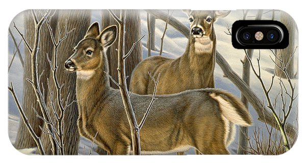 Buck iPhone Case - Ready - Whitetail Deer by Paul Krapf
