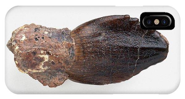 Rebbachisaurus Dinosaur Tooth Phone Case by Dorling Kindersley/uig