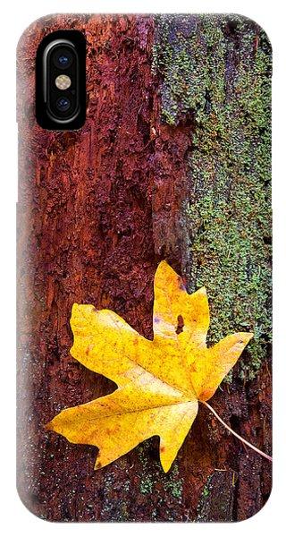 Leaf iPhone Case - Reclamation by Mike  Dawson