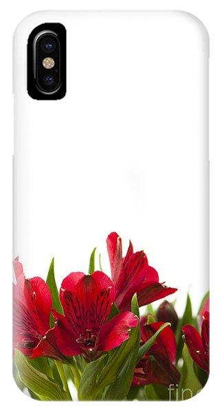 Valentine iPhone Case - Red Alstroemeria by Anne Gilbert