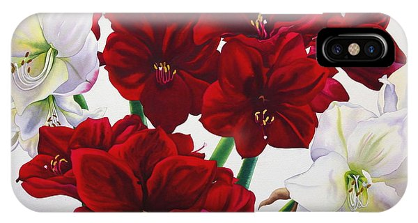 Amaryllis iPhone Case - Red And White Amaryllis by Christopher Ryland