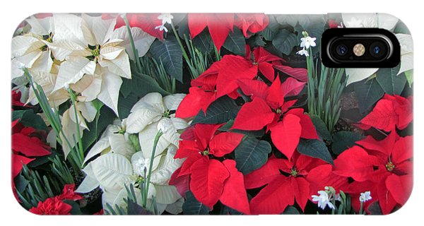 Red And White Poinsettias IPhone Case