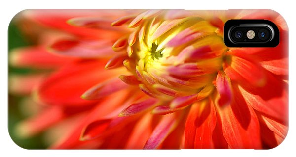 Red And Yellow Dahlia Flower Close Up IPhone Case