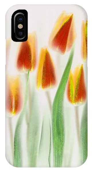 Tulip iPhone Case - Red And Yellow Tulips by Brian Haslam