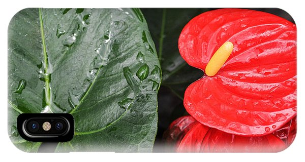 Red Anthurium Flower IPhone Case