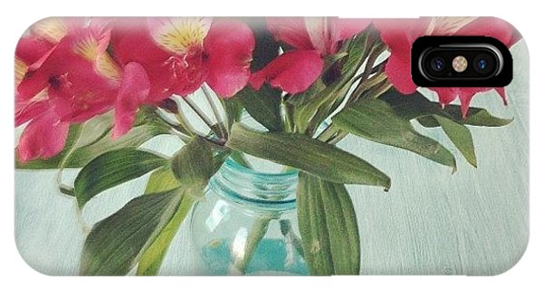 Florals iPhone Case - Red Astramaris Flowers by Kay Pickens