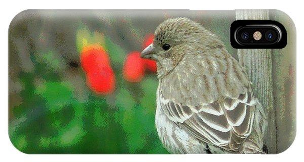 Red Behind Little Beak IPhone Case