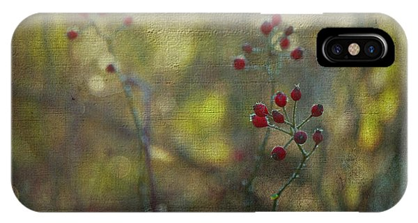 Red Berries On Green After Frost IPhone Case