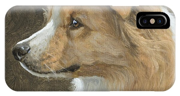 Red Border Collie Portrait IPhone Case