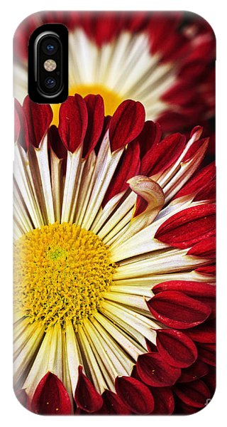 Red Burst IPhone Case