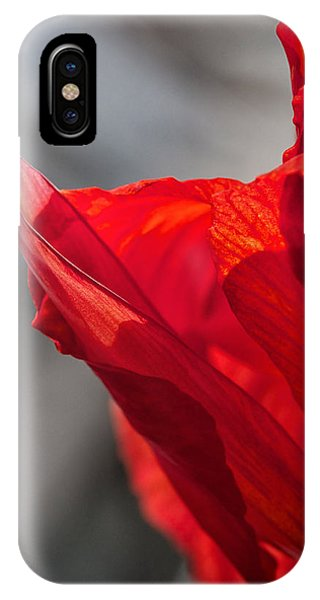 Red Canna IPhone Case