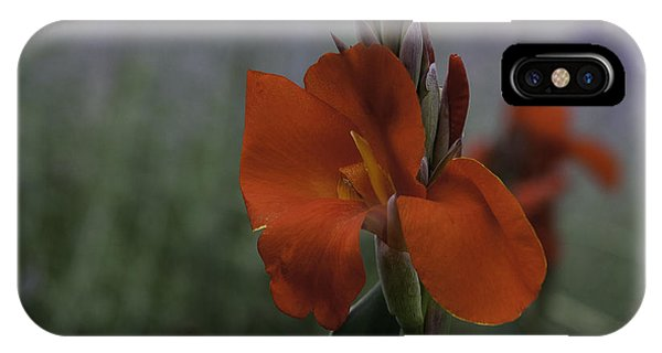 Red Canna Phone Case by Martha Burger