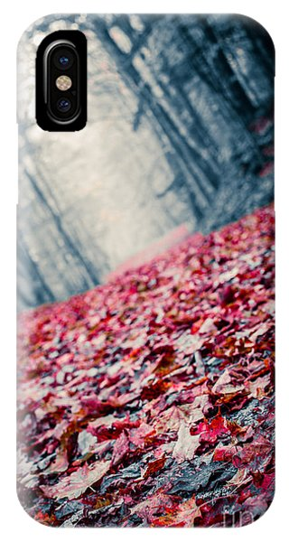 Wood Floor iPhone Case - Red Carpet by Edward Fielding