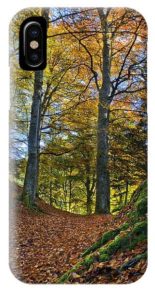 Red Carpet In Reelig Glen During Autumn IPhone Case