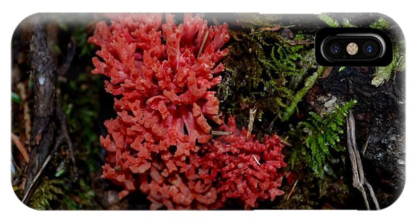 Red Coral Mushroom IPhone Case