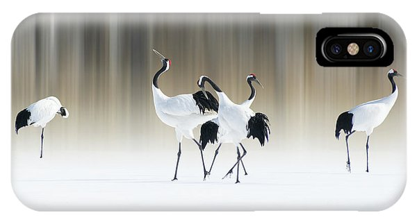 Asia iPhone Case - Red-crested White Cranes by Ikuo Iga