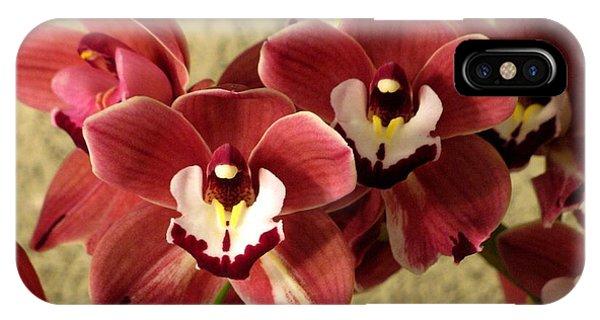 Red Cymbidium Orchid IPhone Case