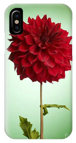 iPhone Case - Red Dahlia by Tony Cordoza