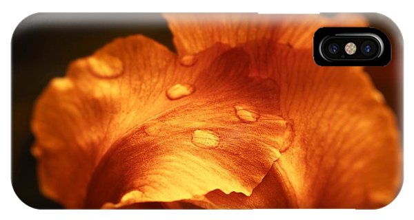 Red Flower Closeup IPhone Case