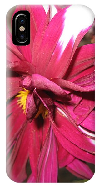 Red Flower In Bloom IPhone Case