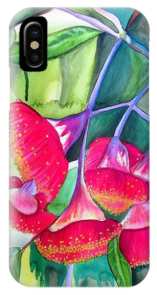 Red Flowering Gumnuts Phone Case by Sacha Grossel