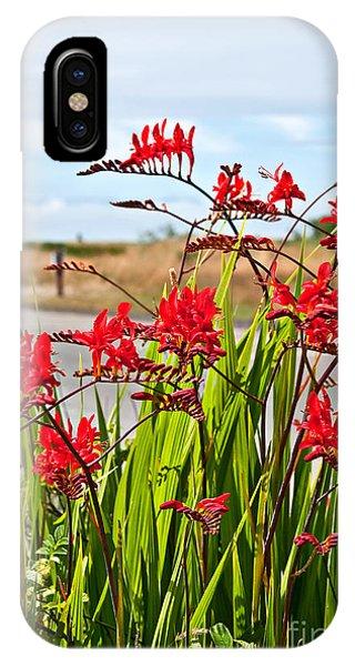 Red Flowers Crocosmia Lucifer Montbretia Plant Art Prints IPhone Case