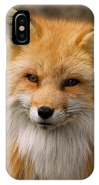 IPhone Case featuring the photograph Red Fox by Nature and Wildlife Photography