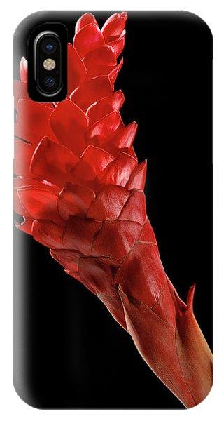Red Ginger (alpinia Purpurata) Phone Case by Gilles Mermet