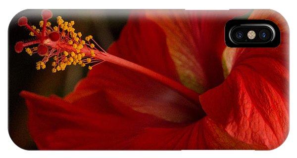 Red Hibiscus 4 IPhone Case