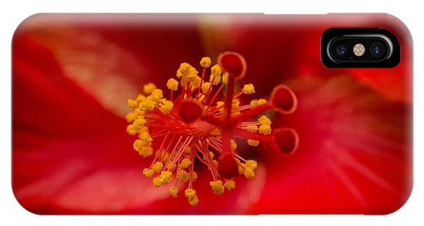 Red Hibiscus 7 IPhone Case