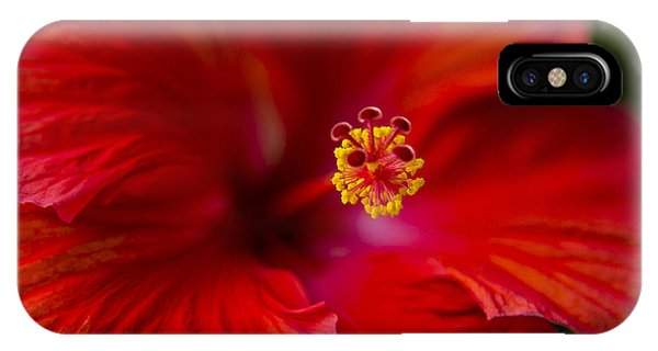 Pistil iPhone Case - Red Hibiscus by Eduard Moldoveanu